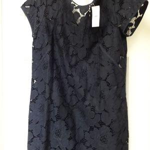 LOFT Navy Lace Tee Dress NWT! Sz.10